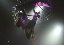 Champagne_kroonluchter_1_-_klein