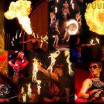 Artiesten en Circusacts